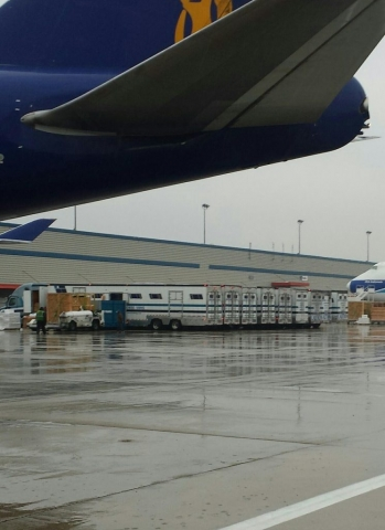 horse vans at airport