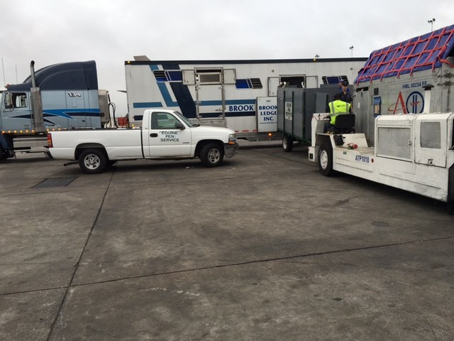 brook ledge truck and van at airport