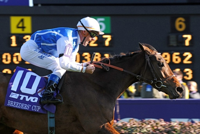 Goldikova and jockey Olivier Peslier win Breeders Cup Mile