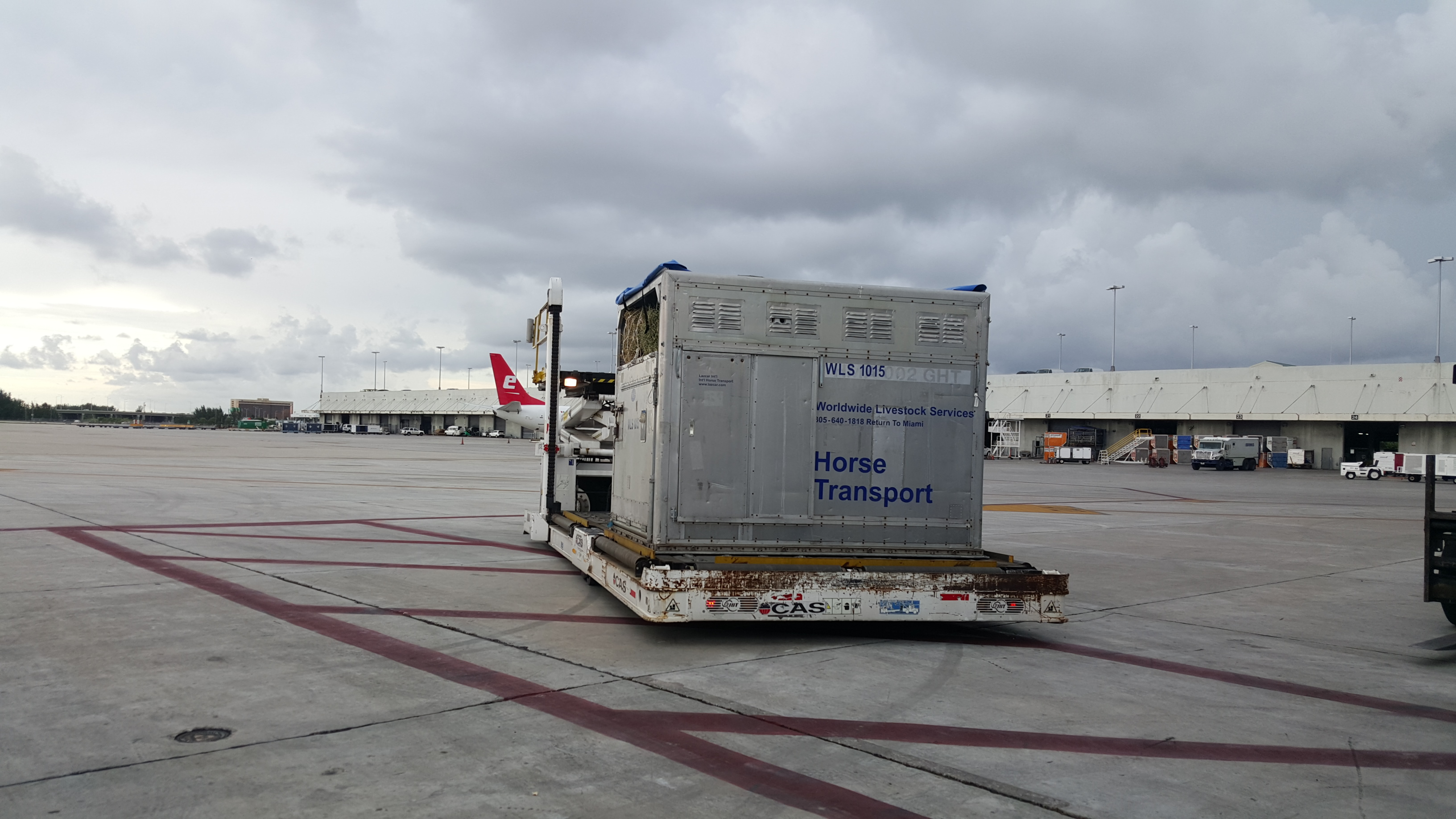 horse air transport pallet