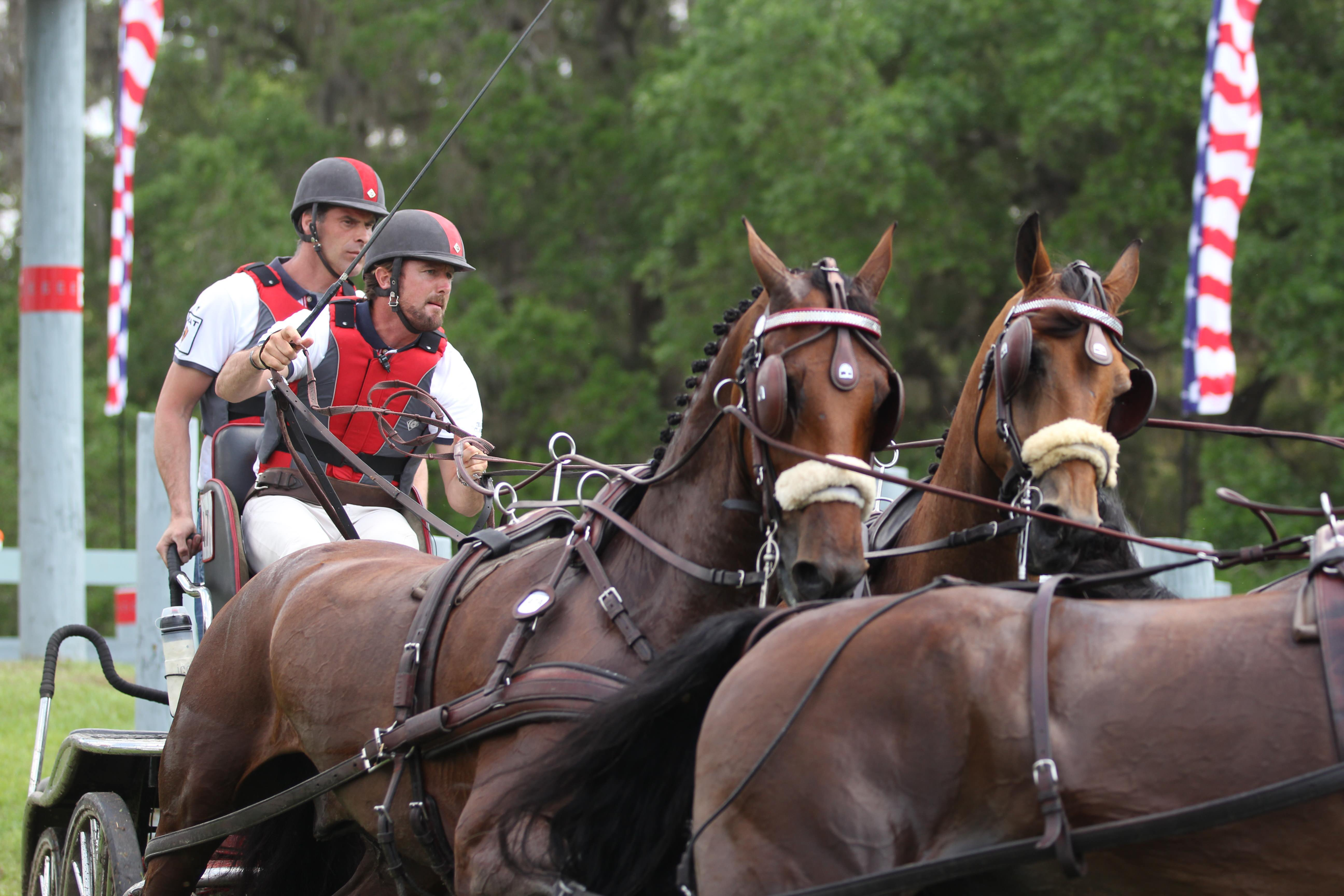 Chester Weber four in hand team at Live Oak